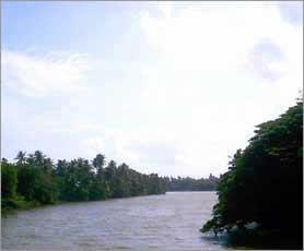 nilwala river